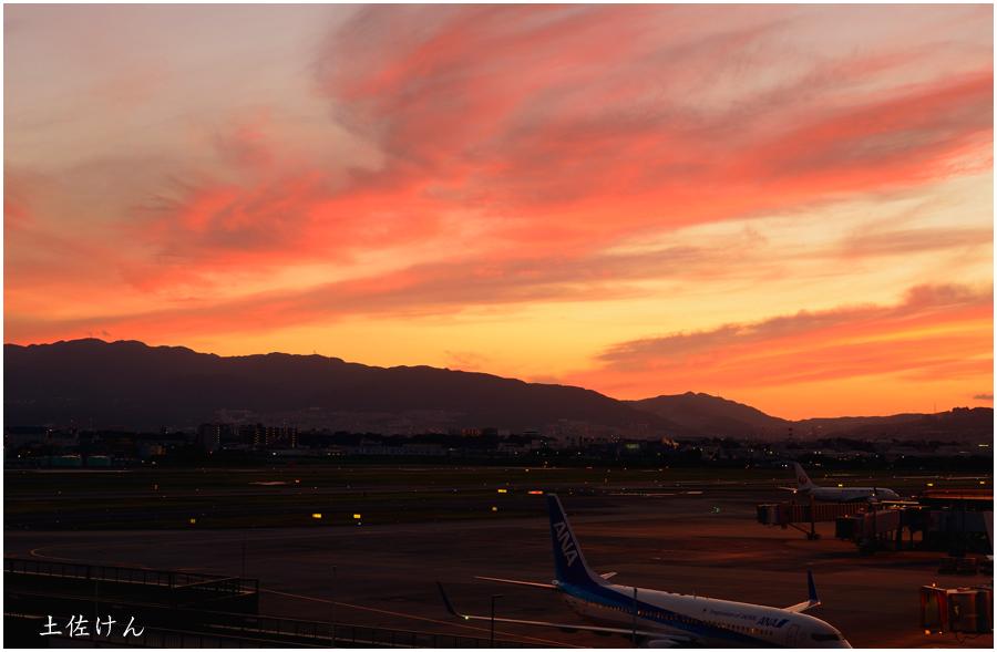 伊丹空港5