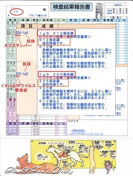 006IMG_0001_20150217161547a8c.jpg