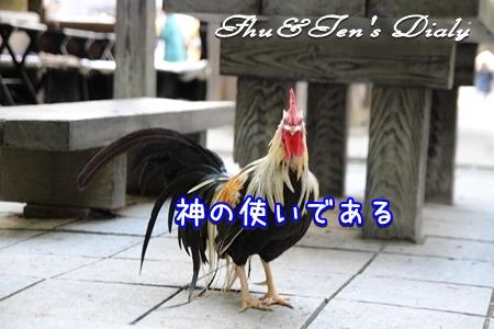 008IMG_5958.jpg