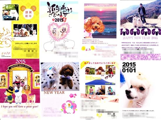 009cats210.jpg