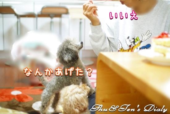 010IMG_0140.jpg