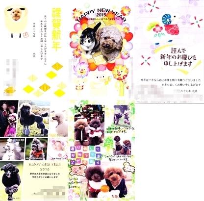010cats220.jpg