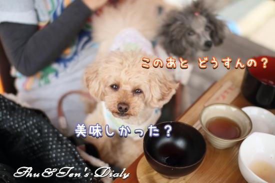 011IMG_3261.jpg