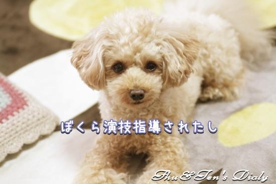 015IMG_0286.jpg