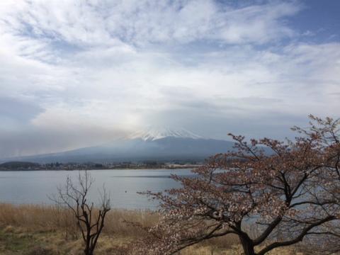 2015`富士五湖6