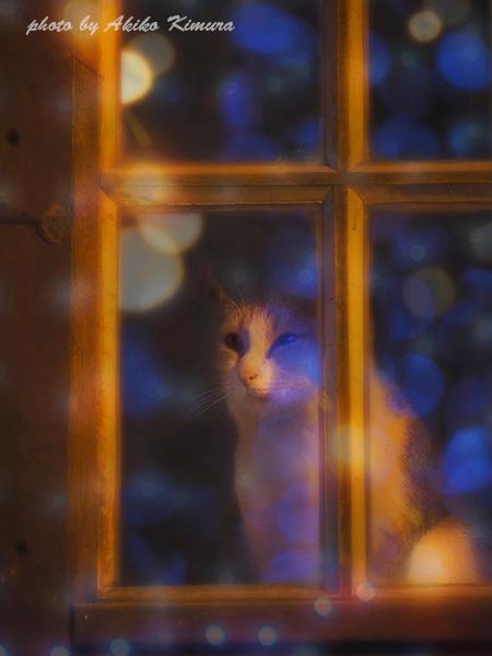 lingering_christmas_01