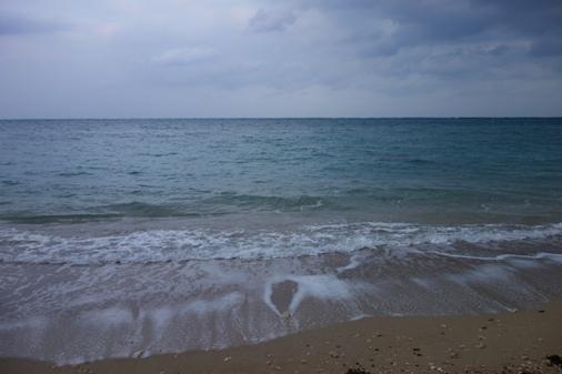 DSC03973 - 海