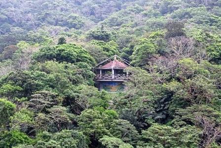 木立の中の東屋DSC03522
