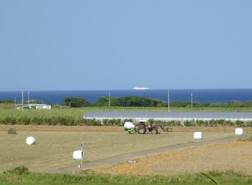 P1000577 - 牧草地