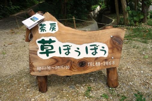 DSC05984 - 草ぼうぼう