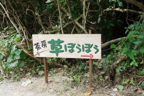 DSC05989 - 草ぼうぼう