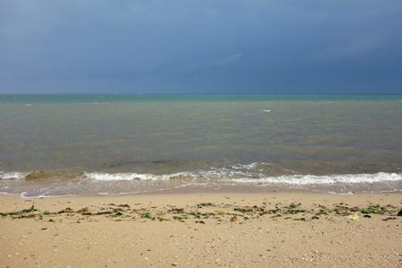 台風翌朝の浜と海 DSC06257