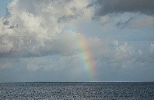 DSC07298 - 虹