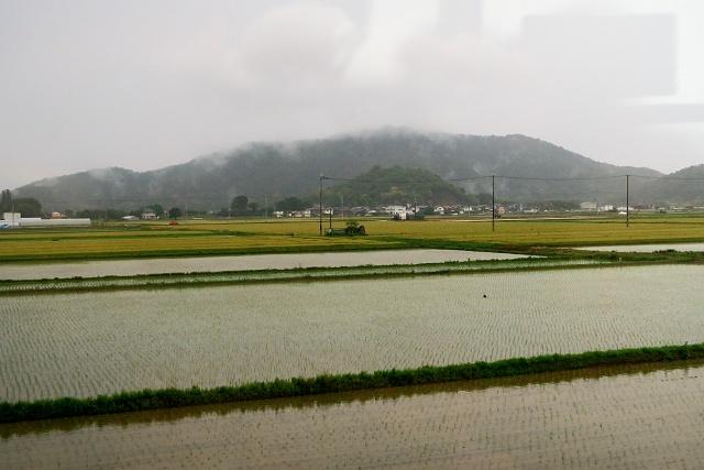 20150516-sinanoya-004-S.jpg