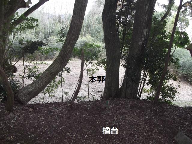 DSCF3604.jpg