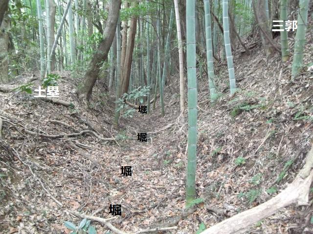 DSCF3609.jpg