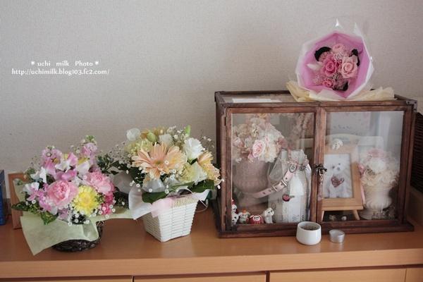 IMG_7883ミルクお花