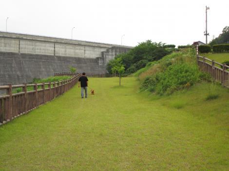 日曜夕方のダム散歩