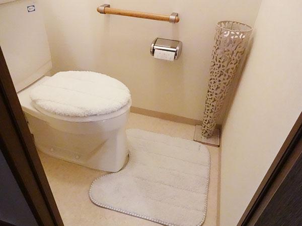トイレのインテリアマット