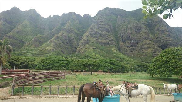 クアロアランチ ハワイ