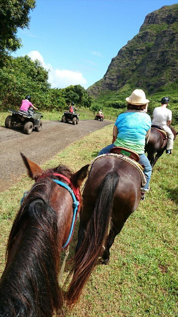 クアロアランチ 乗馬 ハワイ