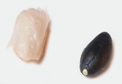 カカオ豆焙煎実験