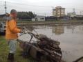 千葉県農試2