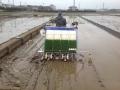 千葉県農試4