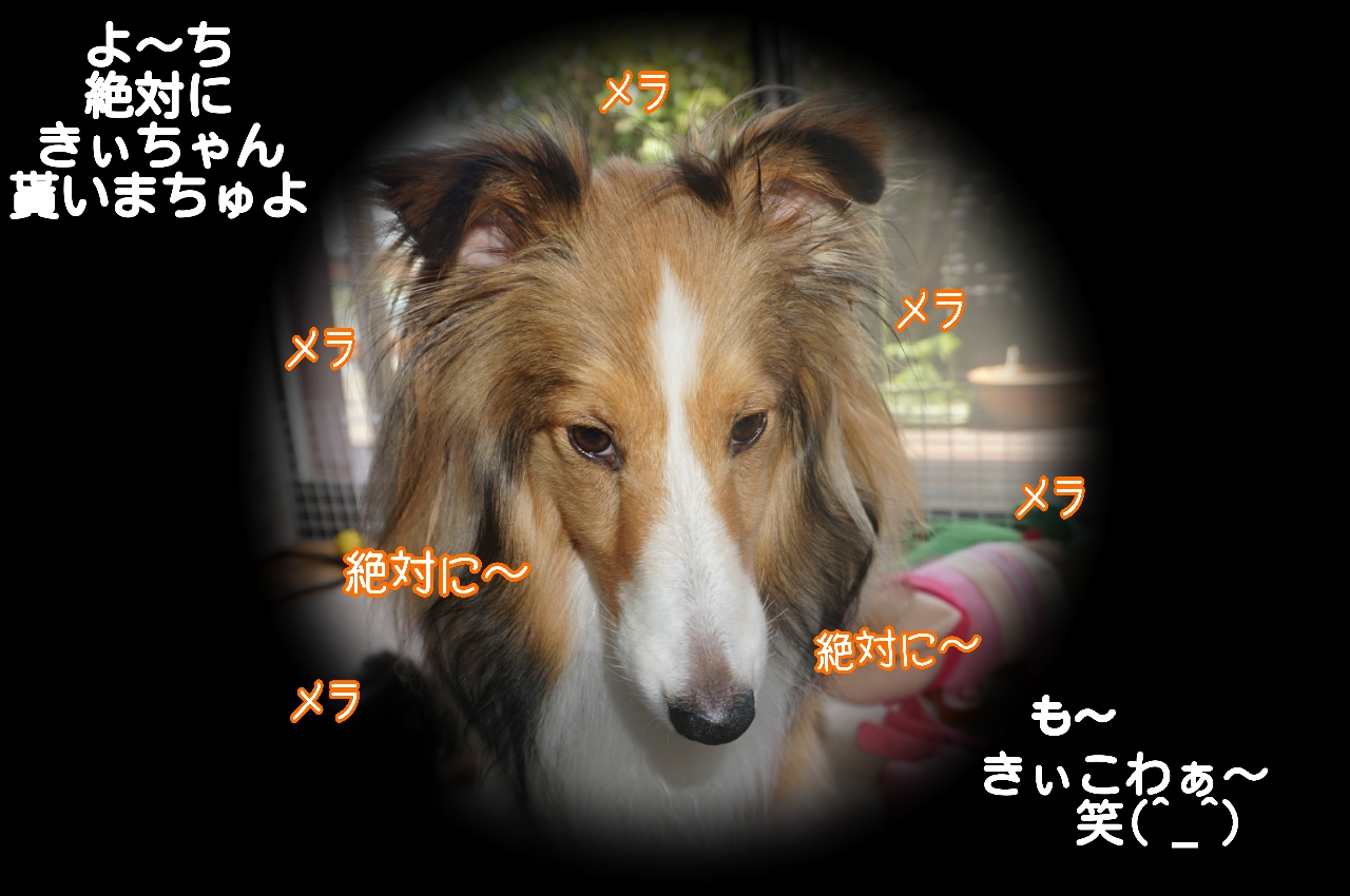 2015-06-02-13-41-05_deco.jpg