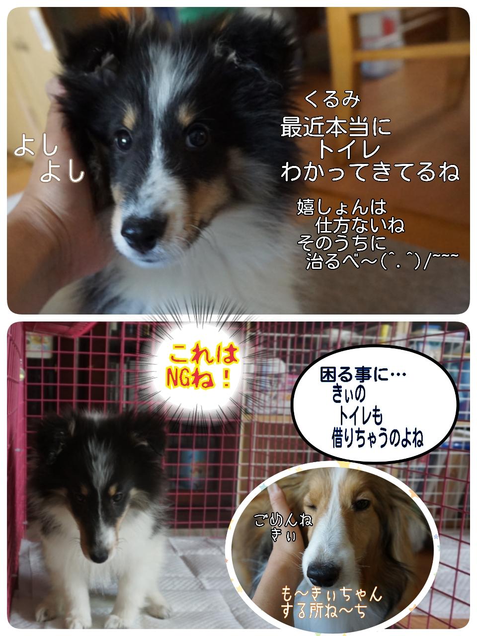 2015-06-05-02-50-13_deco.jpg