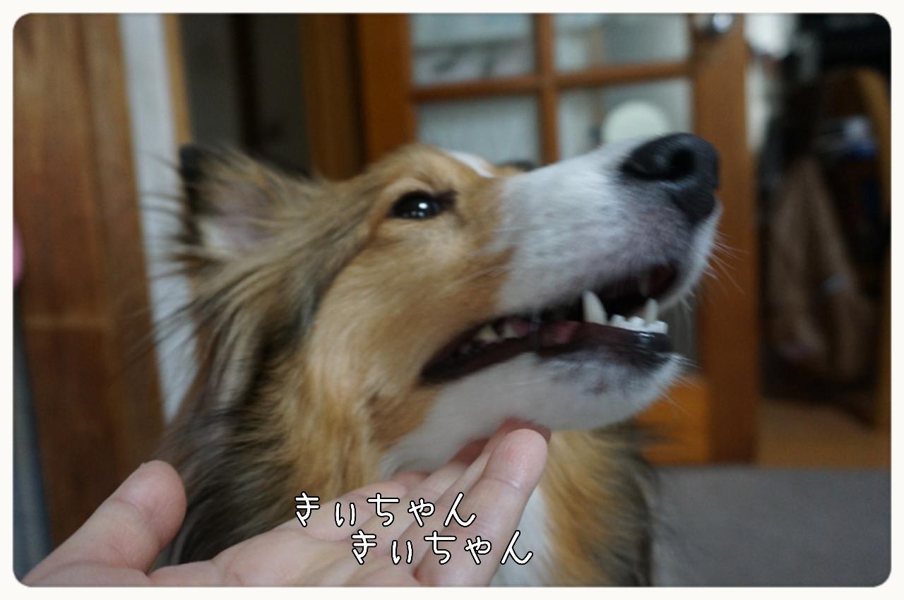 2015-06-08-11-43-14_deco.jpg