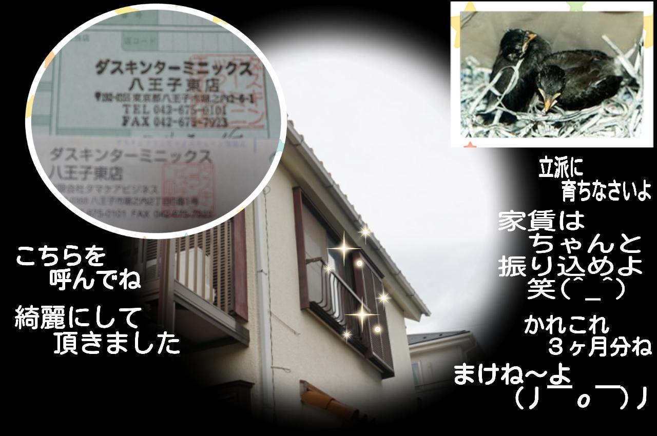 2015-06-08-16-26-28_deco.jpg