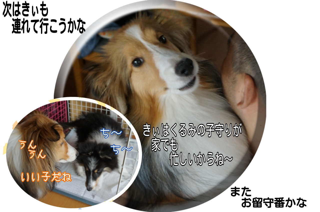 2015-06-13-18-23-01_deco.jpg