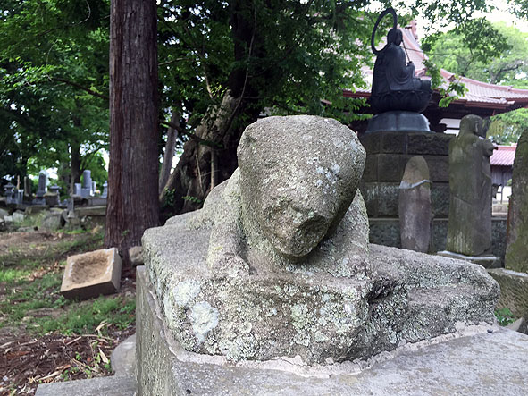 sukagawa shiro-5