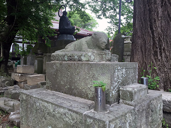 sukagawa shiro-7