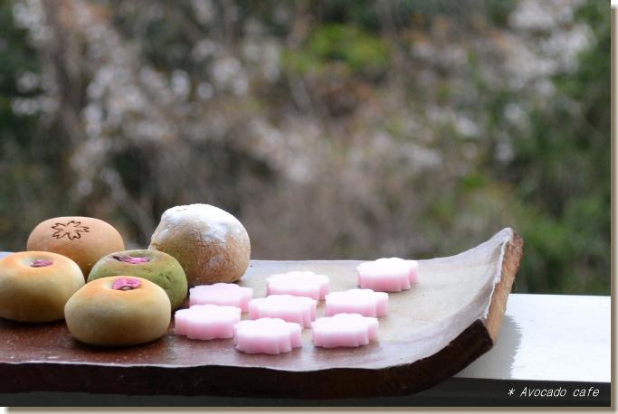 スリコハク桜