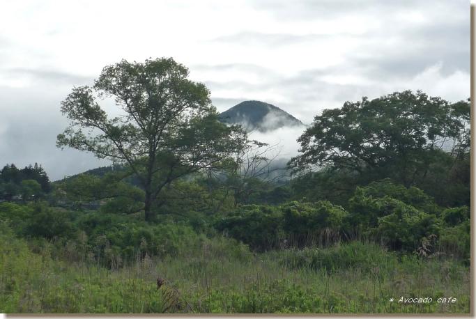 四尾連湖の山