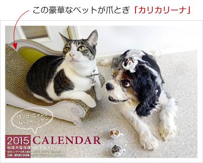 2015_365wankonyanko_calendar_karikarina.jpg