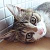 ryouta_p1_top1.jpg