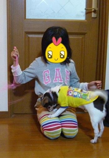 日和と遊んでいます-001