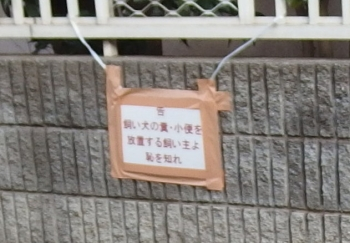 P3260031.jpg