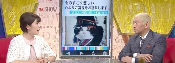 ワイドナショー画像 松本人志 たま駅長は知らない猫なので、沢尻エリカばりに「別に…」 2015年7月5日