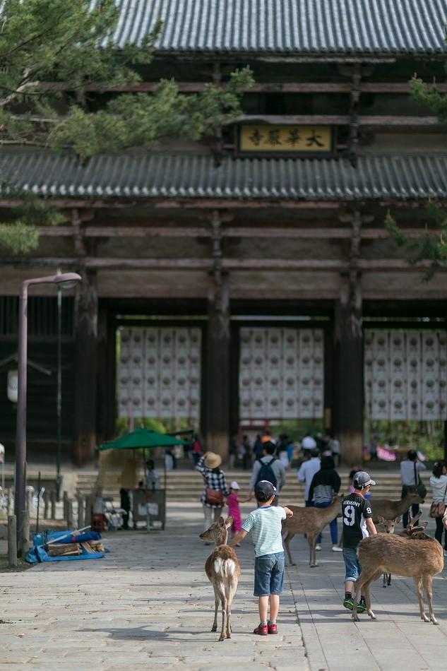 GW東大寺は京都並み-11