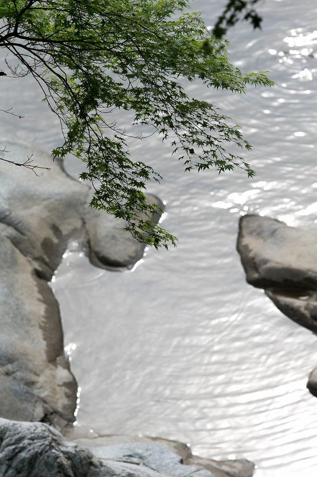 実はこの時期の香嵐渓が好き-18