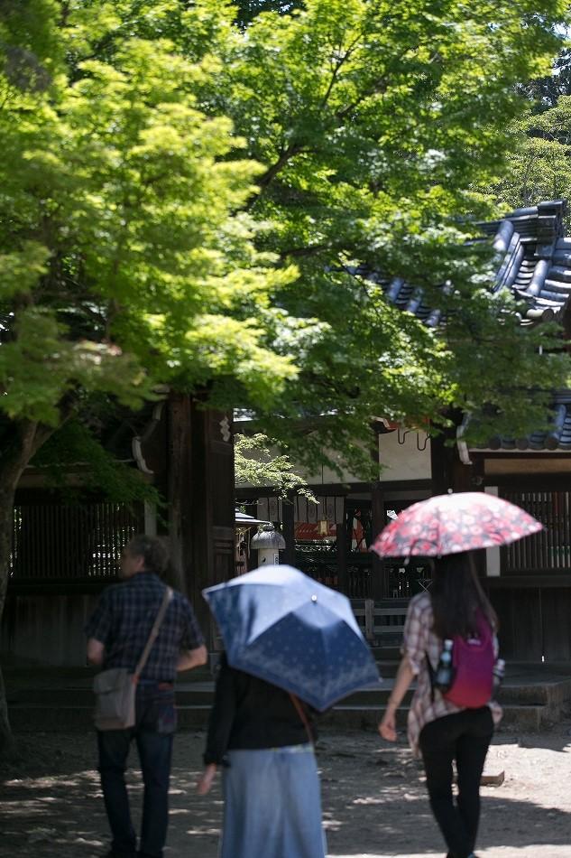 GW東大寺は京都並み-34