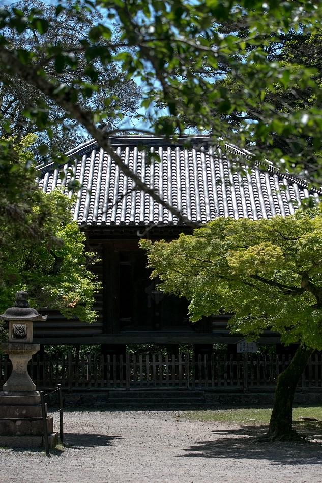 GW東大寺は京都並み-35
