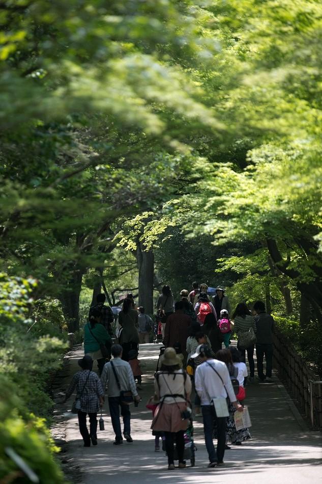 higasshiyama-25.jpg