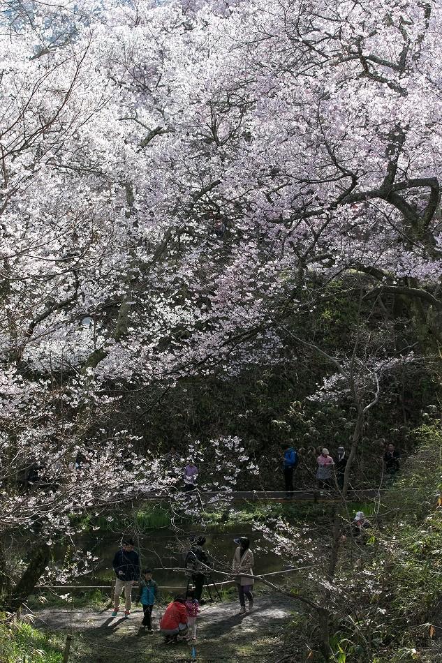 takatou_komisugi-28.jpg