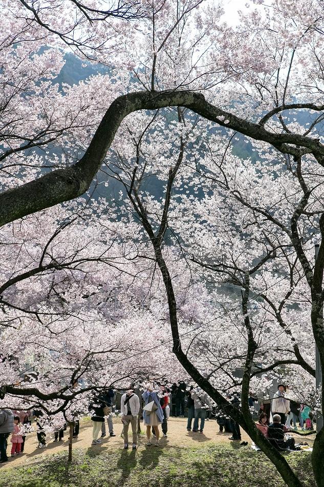 takatou_komisugi-36.jpg