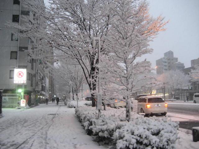 150101元旦大雪さんぽ⑪